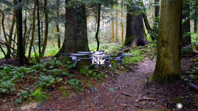 These Rescue Drones Search Forest Trails Like Automaton Rangers