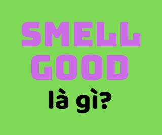 smell good là gì