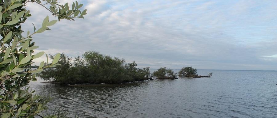 Pequeñas Islas en el Indian River, la costa oeste de Merritt Island