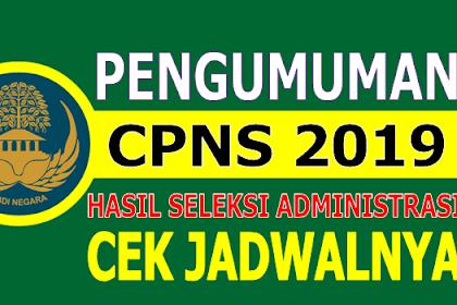Pengumuman Hasil Seleksi Administrasi CPNS 2019, Cek Jadwalnya di Sini!