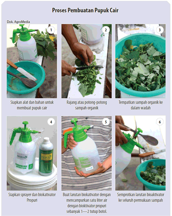 tahapan cara membuat pupuk organik cair