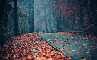 Salmo 30 – Oração poderosa para afastar o mal e fortalecer seu espírito