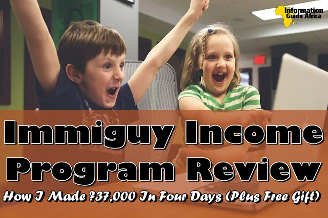 Immiguy Income Program Review