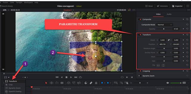 riposizionare e ridimensionare il video trasparente