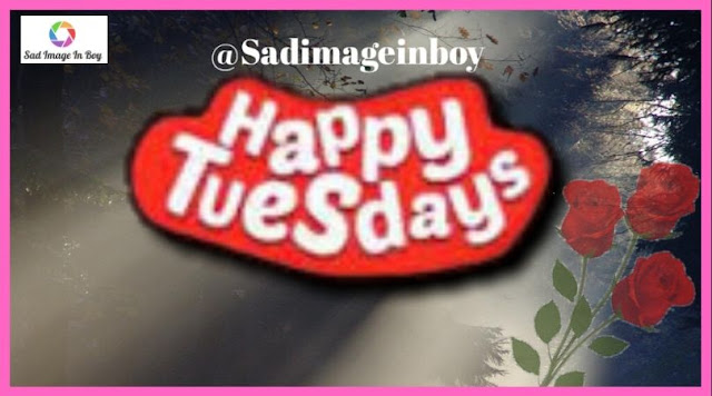 Happy Tuesday images   tuesday pictures, have a wonderful tuesday, tuesday morning pic