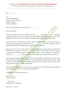 simple job application letter sample for fresh graduate