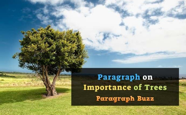 Paragraph on Importance of Trees