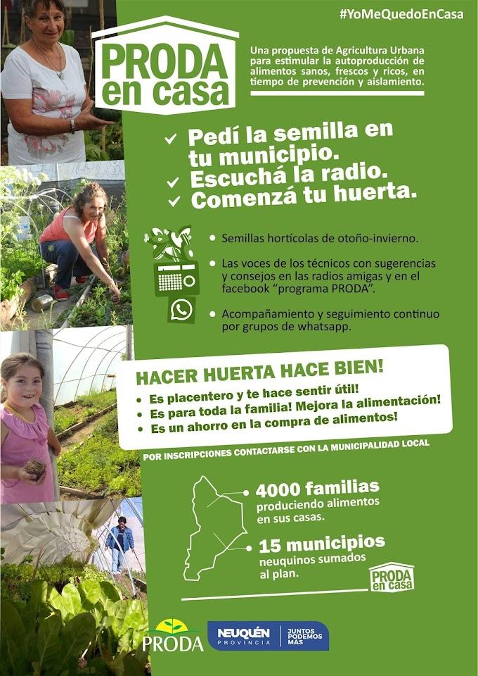 "4 mil familias de 15 municipios  se suman al plan ""PRODA en casa"""