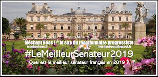 https://mechantreac.blogspot.com/2019/07/lemeilleursenateur2019.html