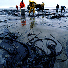 Mare_negra_ poluicao do mar