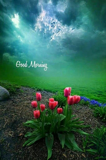 good morning blessing images