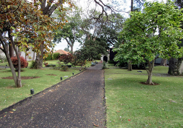 a path in the garden