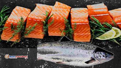 5 Jenis Makanan Bisa Cegah Uban di Usia Muda, Yuk Kita Lihat Apa Saja Itu..