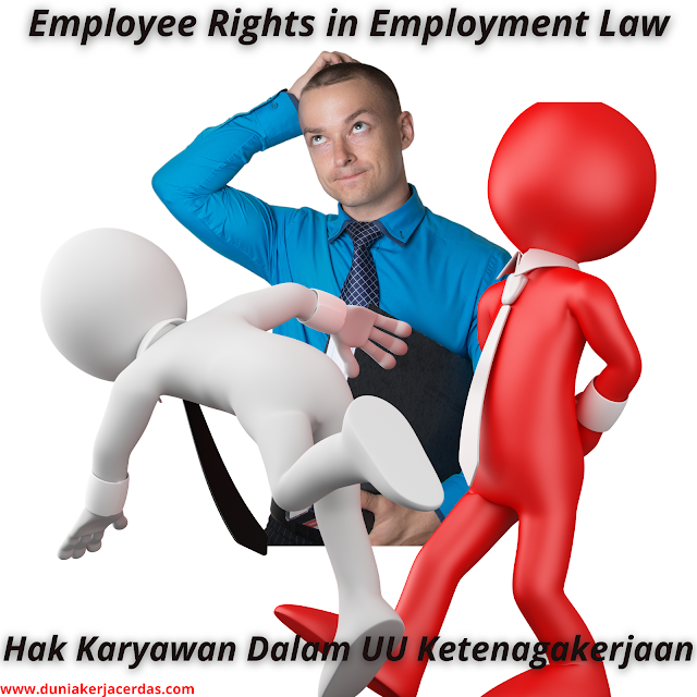 Employee Rights in Employment Law