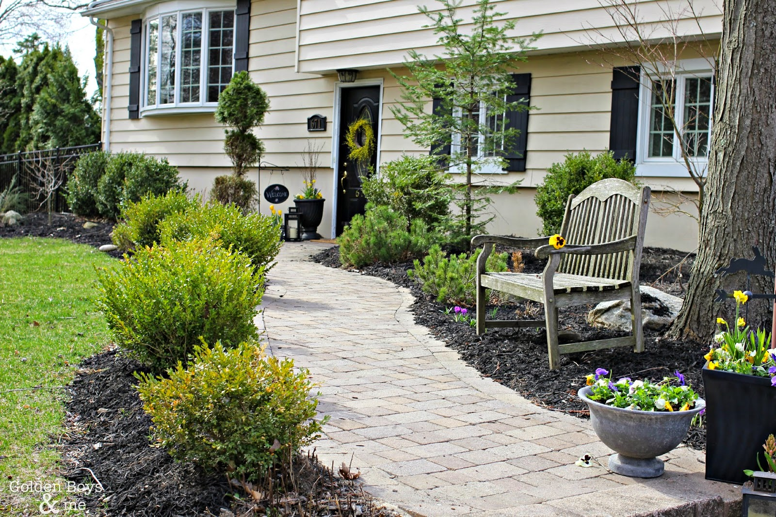 Exterior Landscaping: Golden Boys And Me: Adding Curb Appeal With New Shutters