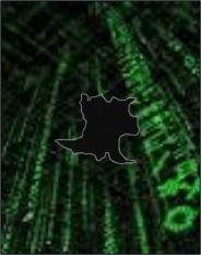La Matanzas del Ciberespacio