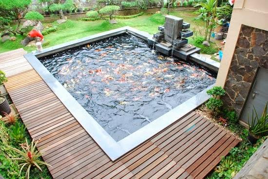 Decoration on Minimalist House Fish Pond