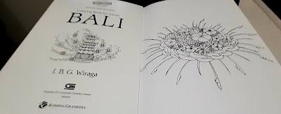 Halaman Pertama Coloring book Bali