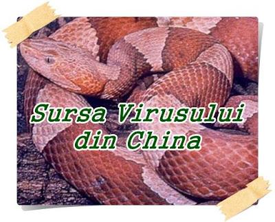 serpii sursa virusului din china 2020