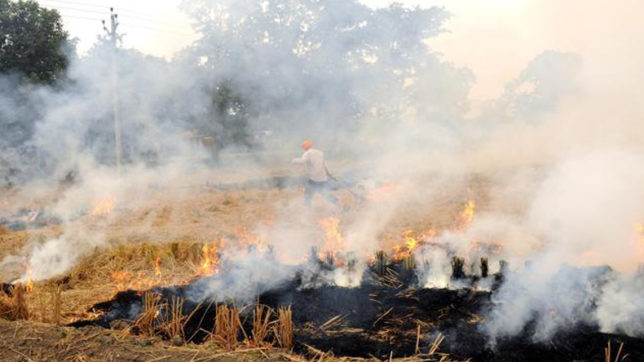 Burning of the stubble, a big cause of Air pollution ....
