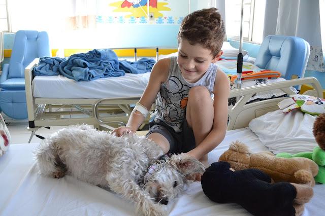 Cãoterapia – Terapia Assistida por Animais