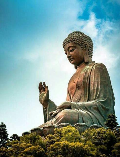 Đạo Phật Nguyên Thủy - Tìm Hiểu Kinh Phật - TRUNG BỘ KINH - Ví dụ cái cưa