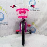 16 sepeda anak asagi
