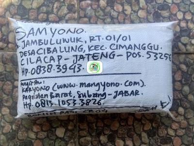Benih Padi Pesanan  SAMYONO Cilacap, Jateng.   (Setelah di Packing).