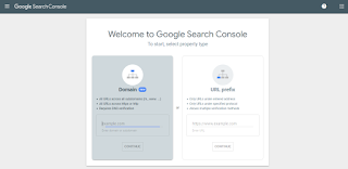 enter your url in Google web console