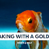 Speaking with a Goldfish