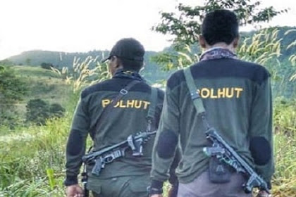 Intip Besaran Gaji Polisi Hutan (Polhut)