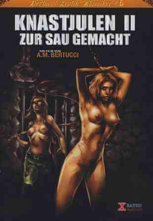 Download [18+] Knastjulen 2 – Zur Sau gemacht (2005) German 480p 377mb