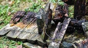 Kerusakan kayu selama pengeringan menurut Sucipto (2009) terdiri dari 5 bagian yaitu sebagai berikut: 1. Retak Ujung (End Checks) dan Retak Permukaan (Surface Checks). 2. Kasus Pengerasan (Case Hardening) 3. Retak di Bagian Dalam Kayu (Honey Combing) 4. Perubahan Bentuk pada Kayu 5. Perubahan Warna dan Kerusakan Akibat Serangan Jamur. Kerusakan kayu selama pengeringan merupakan kerusakan yang terjadi ketika kayu sedang dikeringkan dengan tujuan supaya memiliki kekuatan yang lebih besar dari sebelumnya.