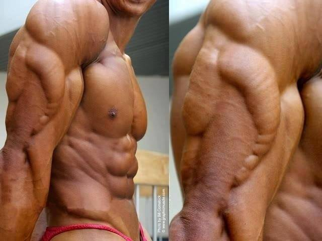 Exercises For Triceps For Every Head World Gym