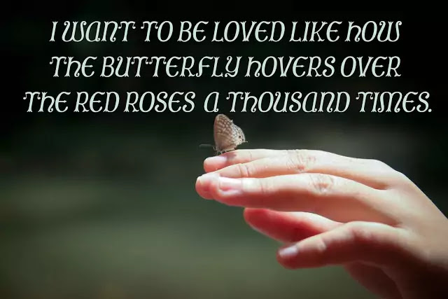 butterfly quotes for love
