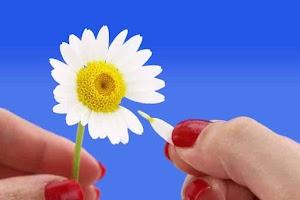 5 Metode Sederhana Untuk Mengetahui Apakah Dia Mencintaimu atau Tidak