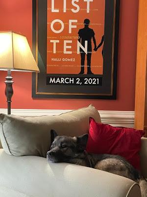 #NewBook #DebutAuthor #2021Books Spotlight on New Book Debut Author Halli Gomez