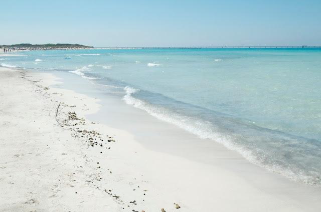 Le spiagge bianche Rosignano