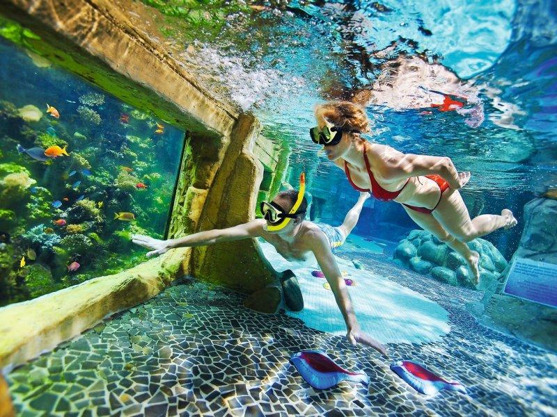 Choosing the Best Center Parcs Holiday in the Netherlands - De Kempervennen snorkelling