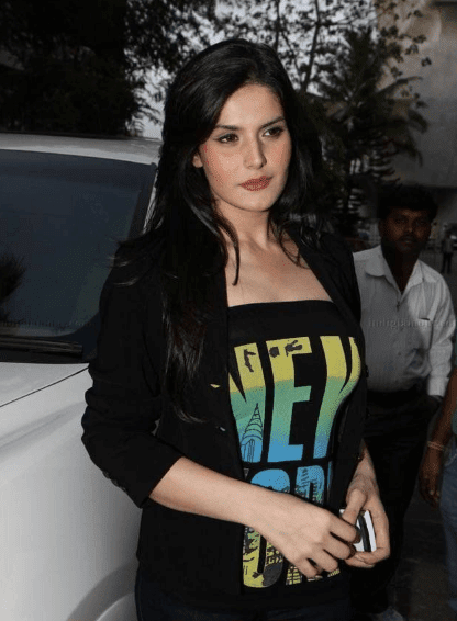 zarine khan hot images
