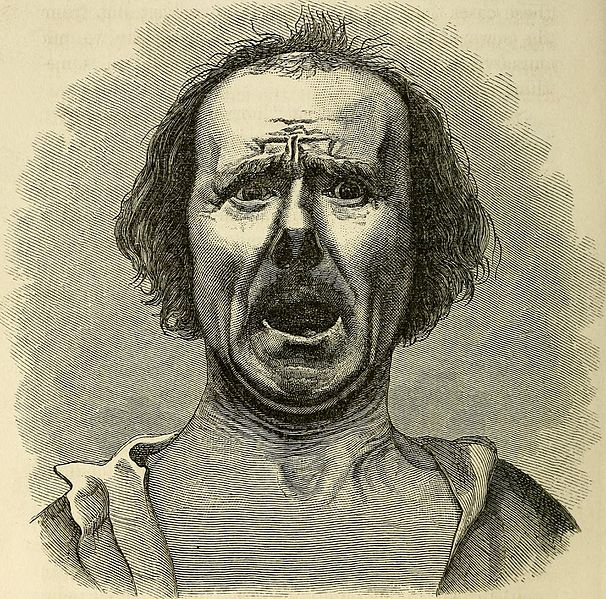 https://commons.wikimedia.org/wiki/File:The_expression_of_the_emotions_in_man_and_animals_(1872)_(14771346374).jpg