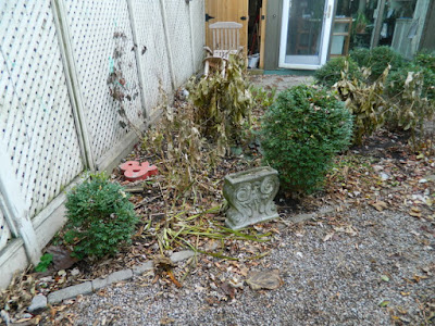 Cabbagetown Backyard Fall Cleanup Before by Paul Jung Gardening Services Inc.--a Toronto Organic Gardening Company