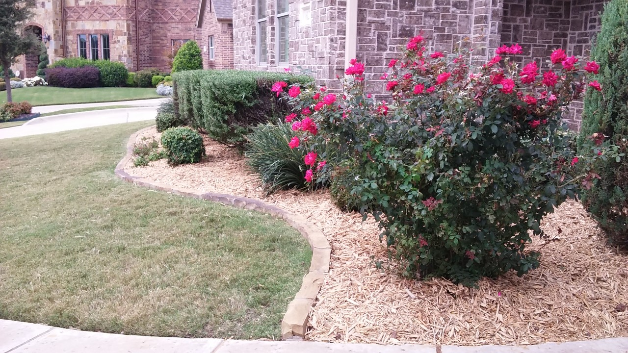 ABOVEALL FLOWER BEDS LANDSCAPING CLEAN TREE TRIM MULCH