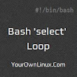 Bash Scripting - 'select' Loop and 'select-case' Statement