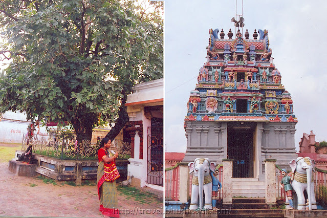 Thiruvarur Naduvana Nathar Temple