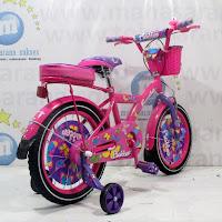 16 Sepeda Anak Family Flubber CTB