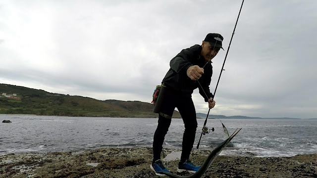 PASEANTE - La pesca del pez aguja con señuelos artificiales