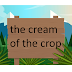 Thành ngữ tiếng Anh - the cream of the crop
