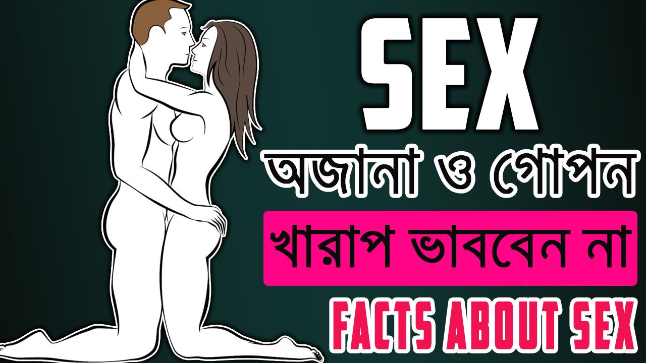 Sex cu magar