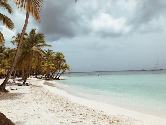 saona île paradisiaque